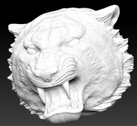 Tiger angry head