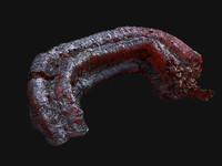 Alien Meat Tentacle