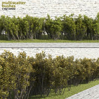 Multiscatter Bushes