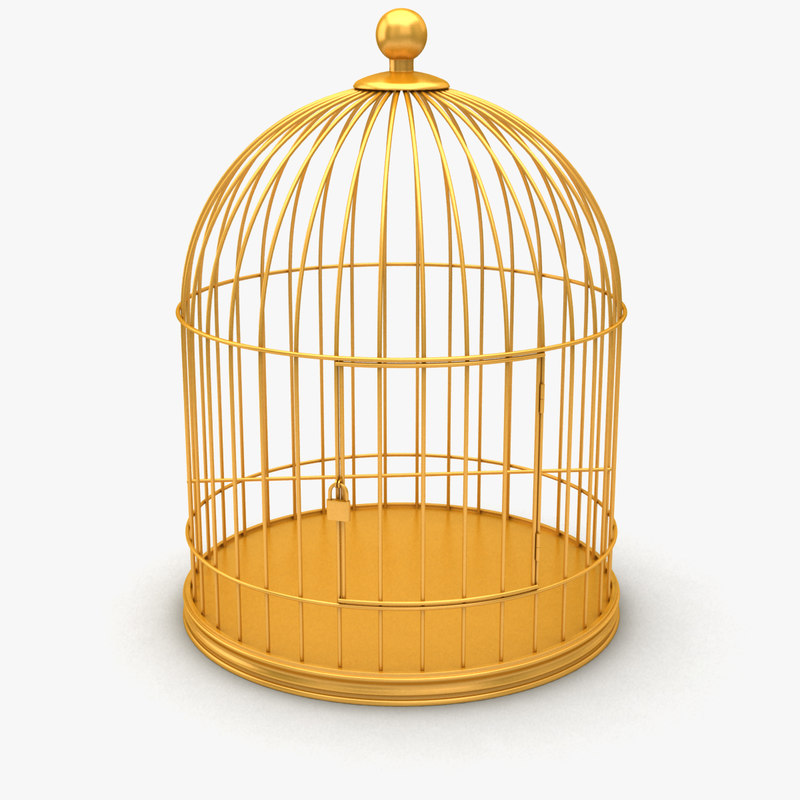 Cage 01.jpg