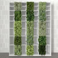Bookshelf with vertical garden