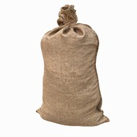 Fabric Sack Realistic