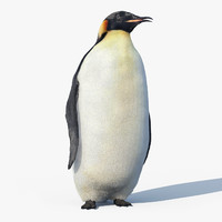 Emperor Penguin(FUR)(RIGGED)