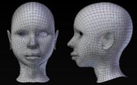 Female Head Base Mesh