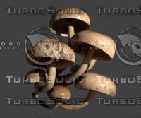 Blender Wall Mushroom