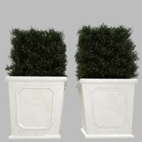 Embossed Lipped Square Planter Set