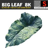 BIG LEAF 8K Ultra HD