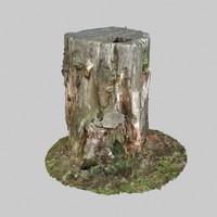 Stump 01