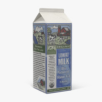 Half Gallon Milk Carton 2