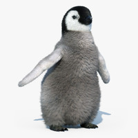 Emperor Penguin Chick(FUR)