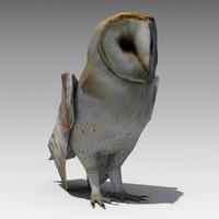Barn Owl Animated