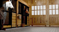 Horse Stable with Horses
