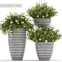 plants set 68