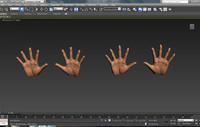 Female & Male Hands
