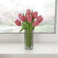 3d tulips model