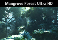 Mangrove forest Ultra HD