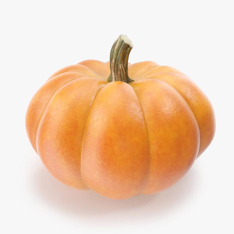pumpkin_1_1.RGB_color.jpg