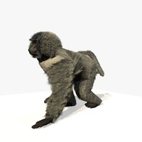 Animated Walking Baboon