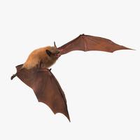 Bat with Fur Rigged
