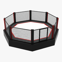 Octagon Boxing Ring