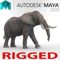Elephant Rigged for Maya
