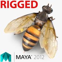 Honey Bee Rigged for Maya