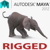 Baby Elephant Rigged for Maya
