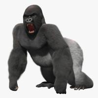 Stylized Gorilla