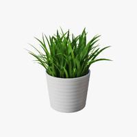 grass pot 3d model
