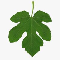 Five Side Fig Leaf