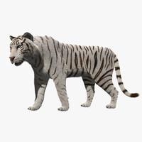Stylized White Tiger