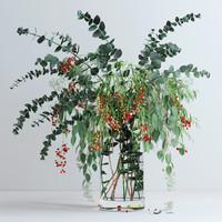 Pepperberries and Eucalyptuses