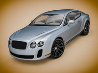 Bentley Continental SS 2010
