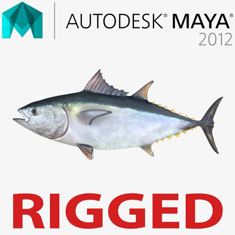 3d Tuna Fish: Tuna Fish Rigged 3d Ma