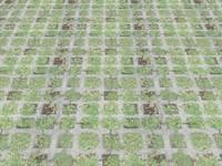 5 HD TILING/SEAMLESS CONCRETE GRASS PAVER TEXTURES