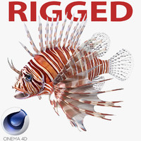 Lionfish Rigged for Cinema 4D