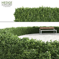 Multiscatter Hedge