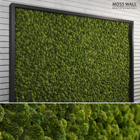 3d moss wall multiscatter scattering