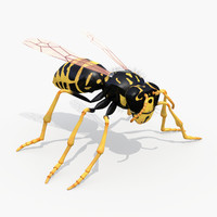 Realistic Wasp - 3ds Max