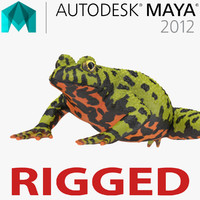 Fire Bellied Toad Frog Rigged for Maya