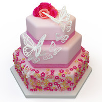cake 060 max