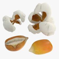 Popcorn Evolution Set
