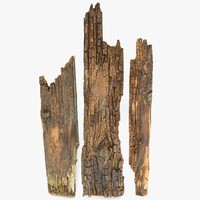 Weathered Rotten Planks Short