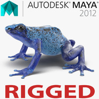 Poison Dart Frog Rigged for Maya
