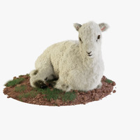 Lamb Rigged with Fur and Ready Pose