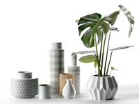 Vase Set with Monstera Plant