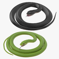 Black and Green Snakes Rigged