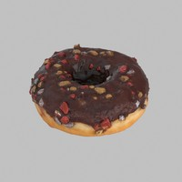 Christmas Frosting Chocolate Donut