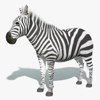3d zebra fur model