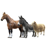 3d model animals horse donkey sheep